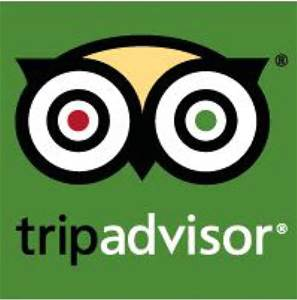 trip advisor, reviews, best night out,comedy, dorset, entertainment, comedy